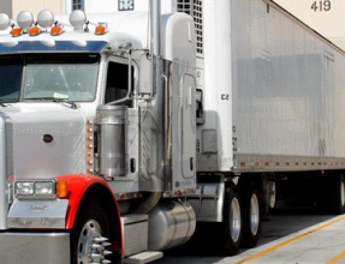 Food Transportation and logistics Services